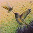 """Malba kolibříka - čárkovaná malba laděná do zelena, více<a href=""""http://malebno.cz/v-hlavni-roli-zelena-dve-nove-malby-akrylem/""""> ZDE </a>"""