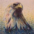 """Malba orla na plátně - kreslenou předlohu si prohlédněte <a href=""""http://malebno.cz/malba-kresba-orla-realisticka-kresba-tuzkou-pokracovani-carkovaneho-stylu/"""">ZDE</a>"""