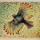 "V letu, malba na plátně. Více <a href=""http://malebno.cz/50-prispevek-s-nim-novy-styl/"">ZDE</a>"