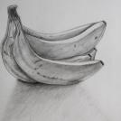 Kresba banánů obyčejnou tužkou