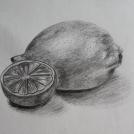 Studie citronu obyčejnou tužkou