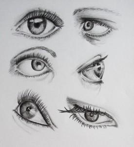 Studie 6 očí.