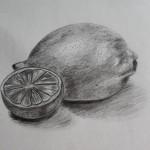 Studie citronu - kresba tužkou
